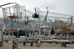 Herd of trolleys