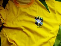 Brasil, imagina na copa, catarse, projeto