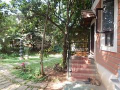 The Legend Kuchipudi Dancer Dr. Vyjayanthi Kashi's Shambhavi School of Dance Outside Photography By Chinmaya M.Rao  (258)