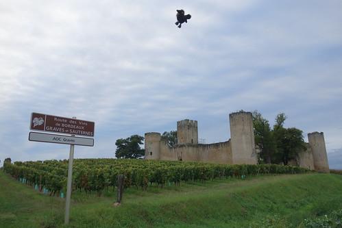 Nous sommes arrivés dans le domaine viticole des graves et du sauterne