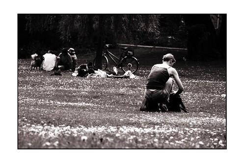 2006_05_07_wiese_biergarten_03