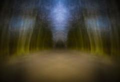 dreamscape III