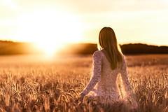 Follow The Sun [explored 20150817]