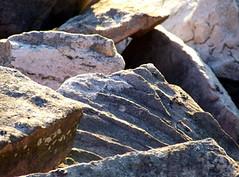 Tuscarora sandstone