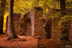Sanspareil im Herbst-15