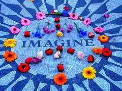 Imagine ... Neurodiversity ... Acceptance ...