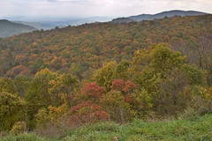 """CRW_4538: Skyline Drive Foliage • <a style=""""font-size:0.8em;"""" href=""""http://www.flickr.com/photos/54494252@N00/8705303/"""" target=""""_blank"""">View on Flickr</a>"""