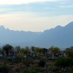 """Cemetary Foreground <a style=""""margin-left:10px; font-size:0.8em;"""" href=""""http://www.flickr.com/photos/36521966868@N01/9447291/"""" target=""""_blank"""">@flickr</a>"""