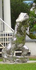Alligator, Lake Charles LA