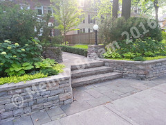 Menno-braam-stone-steps-wall-with-Pillars-1