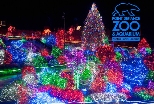Zoo Light Tickets Houston