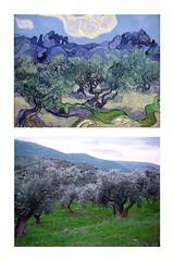 Vincent Van Gogh vs. FlickrJunkie olive trees