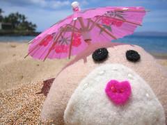 maui_umbrella