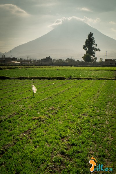 Arequipa - Peru-2088.jpg