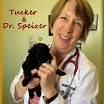 Tucker with Dr Linda