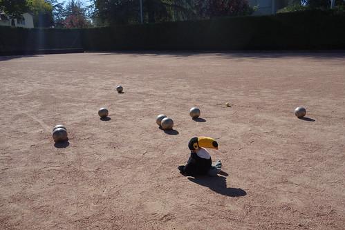 Et un terrain de boules !