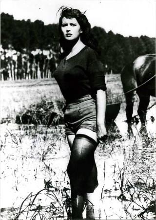 Silvana Mangano en Arroz amargo