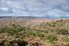 Faia Brava Reserve landscape