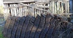 """Der Dachziegel. Die Dachziegel. Hier sind viele Dachziegel gestapelt. Mit Dachziegeln deckt man Häuser. • <a style=""""font-size:0.8em;"""" href=""""http://www.flickr.com/photos/42554185@N00/33137518992/"""" target=""""_blank"""">View on Flickr</a>"""