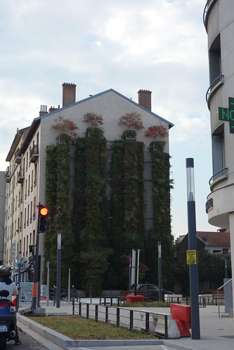 La nature s'invite dans la ville !