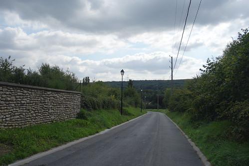 La région est boisée, on aperçoit la forêt de Rambouillet