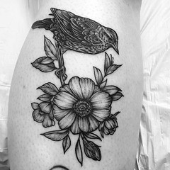 Bird and flowers. Thank you @wyldjazmine3 ! . .. ... . #eyeofjadetattoo #eyeofjade #jeremygolden #jeremy_golden #jeremygoldentattoo #blackwork #blackworkerssubmission #darkartists #blacktattoomag #blxckink #blacktattooart #btattooing #onlyblackart #blackt