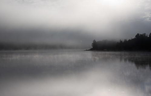 Dead River Fog
