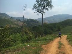 Schotterweg in Richtung asphaltierten Höhenweg