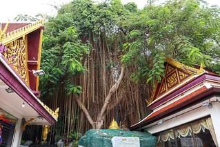 The Golden Mountain, Bangkok