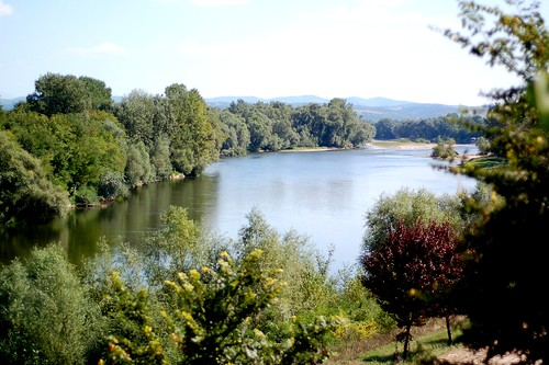 Reka Velika Morava