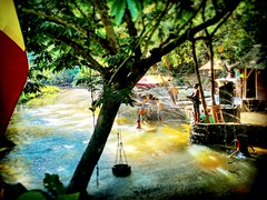 chalet paktam Jalan Taman Zooview, Kampung Kemensah, 68000 Ampang, Selangor 010-331 0331 https://maps.google.com/?cid=14430347980064047197&hl=en&gl=gb  #tree #nature #travel #holiday #trip #Asian #Malaysia #Selangor #ampang #travelMalaysia #holidayMalaysi