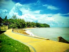 Hornbill Bird Statue 93010, Sarawak https://goo.gl/maps/2uPJtVQi6q52  #travel #holiday #Asian #Malaysia #Sarawak #Kuching #travelMalaysia #holidayMalaysia #旅行 #度假 #亚洲 #马来西亚 #沙拉越 #古晋 #trip #马来西亚旅行 #traveling #马来西亚度假  #beach #海滩 #pantai #tree #damaibeach #b