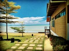 Bahagian Kuching, Sarawak https://goo.gl/maps/UkRKsTp9xpj  #travel #holiday #Asian #Malaysia #Sarawak #Kuching #travelMalaysia #holidayMalaysia #旅行 #度假 #亚洲 #马来西亚 #沙拉越 #古晋 #trip #马来西亚旅行 #traveling #马来西亚度假  #beach #海滩 #damaibeach #蓝天 #bluesky #tree