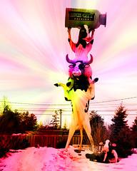 2018-03-15 74/365 Lock City Dairies