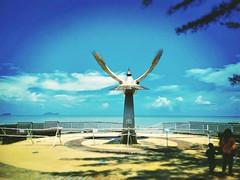 Bahagian Kuching, Sarawak https://goo.gl/maps/a65CoedWZbD2  #travel #holiday #Asian #Malaysia #Sarawak #Kuching #travelMalaysia #holidayMalaysia #旅行 #度假 #亚洲 #马来西亚 #沙拉越 #古晋 #trip #马来西亚旅行 #traveling #马来西亚度假  #beach #海滩 #bird #damai #鸟 #bluesky #蓝天