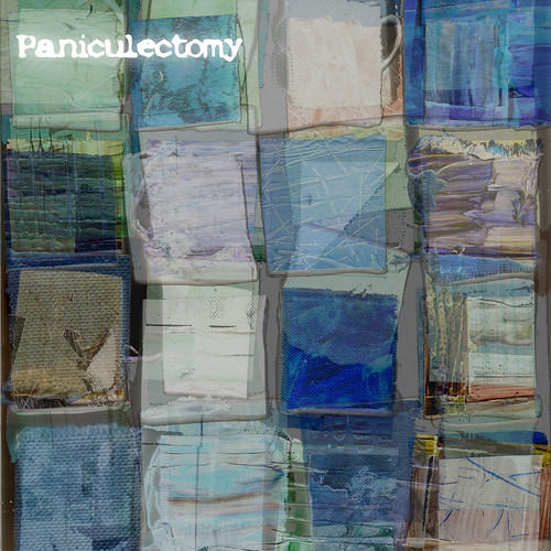 Paniculectomy