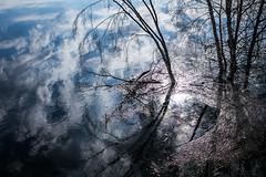Tornionjoki tulvii 2018