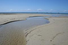 Cape Tribulation Beach - 3