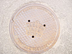 Wabush Manhole Cover IV