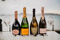 šampanjci
