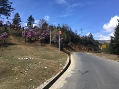 Der Frühling ist auch in den höheren Lagen angekommen.