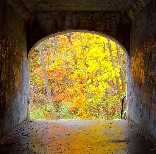Autumn Framed.