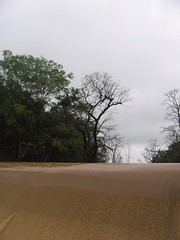 Kollibacchalu Dam -Malenadu Heavy Rain Effects Photography By Chinmaya M.Rao   (56)