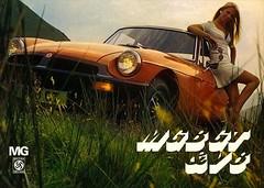 cars023