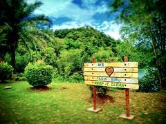 Bau, Sarawak https://goo.gl/maps/ETG25BcPMkC2  #travel #holiday #Asian #Malaysia #Sarawak #Kuching #travelMalaysia #holidayMalaysia #旅行 #度假 #亚洲 #马来西亚 #沙拉越 #古晋 #trip #马来西亚旅行 #traveling #bau #石隆门 #mountain #tree #grass #山 #树 #lake #湖