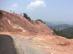 Strassenprojekt = grosser Einschnitt in die Natur: Aus Wald wird Wüste