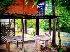 Kampung Janda Baik, 28750 Bentong, Pahang https://goo.gl/maps/iTpmvSVydKk  #travel #holiday #traveling #trip #Asian #Malaysia #旅行 #度假 #亚洲 #马来西亚 #วันหยุด #การเดินทาง #ホリデー #휴일 #여행 #праздник #путешествие #大自然 #nature #природа #ธรรมชาติ #자연 #alam #river #河 #