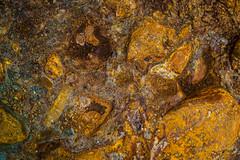 Rio Tinto dried