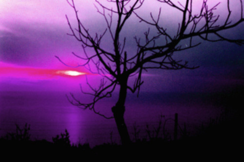 A Sunset is a colored poem that ends up Amethyst