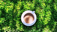 A nice cup of tea - gwaan gwaan gwaan